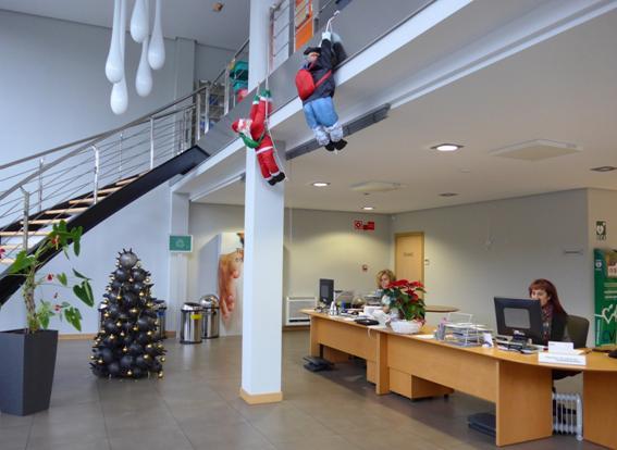 Foto entrada de CV Protection con árbol de navidad