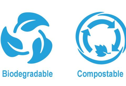 PRODUCTOS DESECHABLES COMPOSTABLES BIODEGRADABLES CV PROTECTION